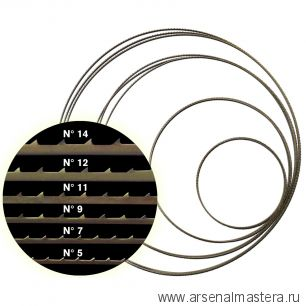 Полотно для ленточной пилы Pegas N5 М00012501