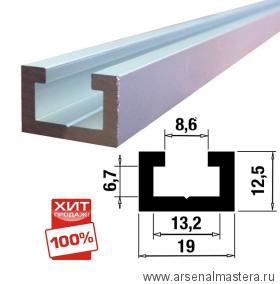 Шина-направляющая T-track  (профиль-шина) 19 мм, анодированная, серебро матовое, 1 м TR019.1000
